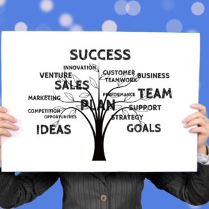 We build custom business strategies to help your business.